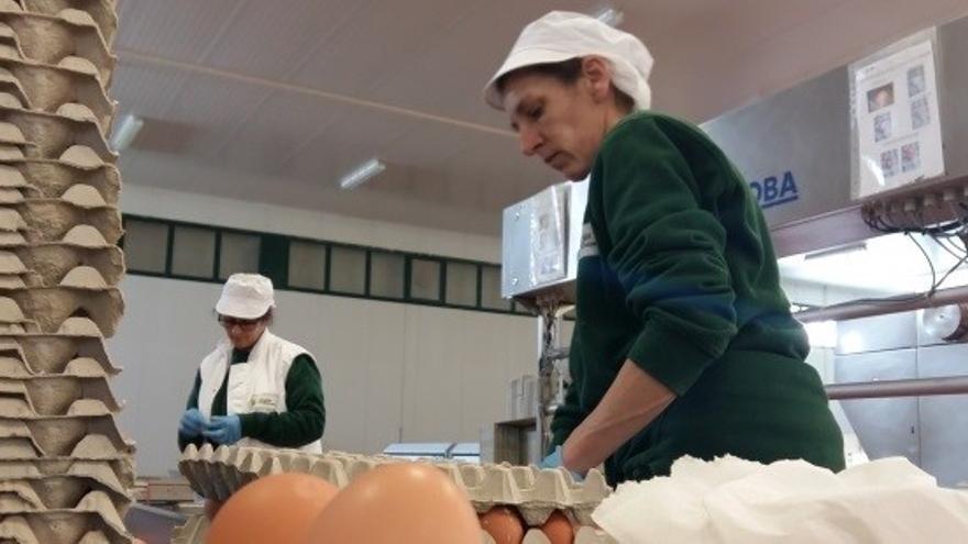 Aragón convoca ayudas a la industria agroalimentaria de Teruel con los fondos Fite por valor de 1,25 millones de euros
