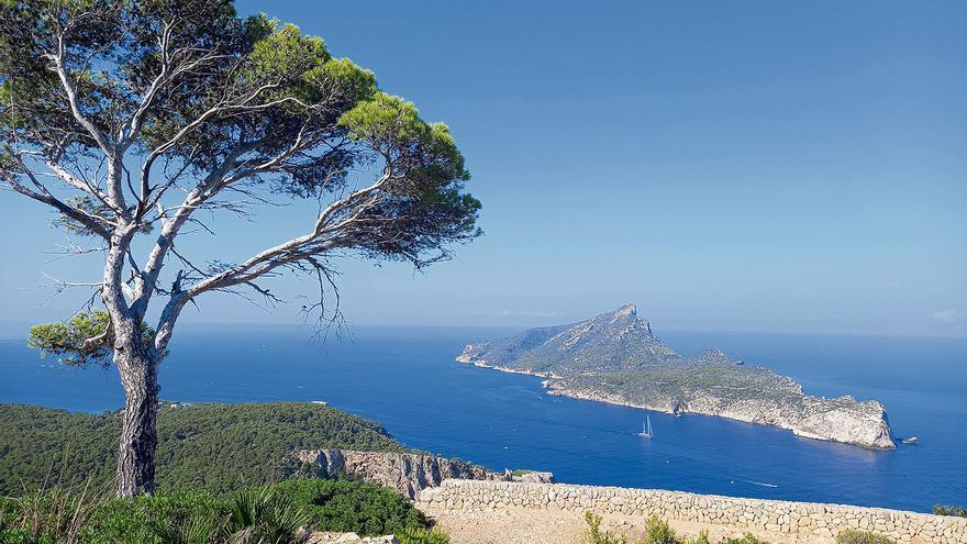 Ausflugstipp: Im Oktober noch schnell auf der Dracheninsel vor Mallorca wandern