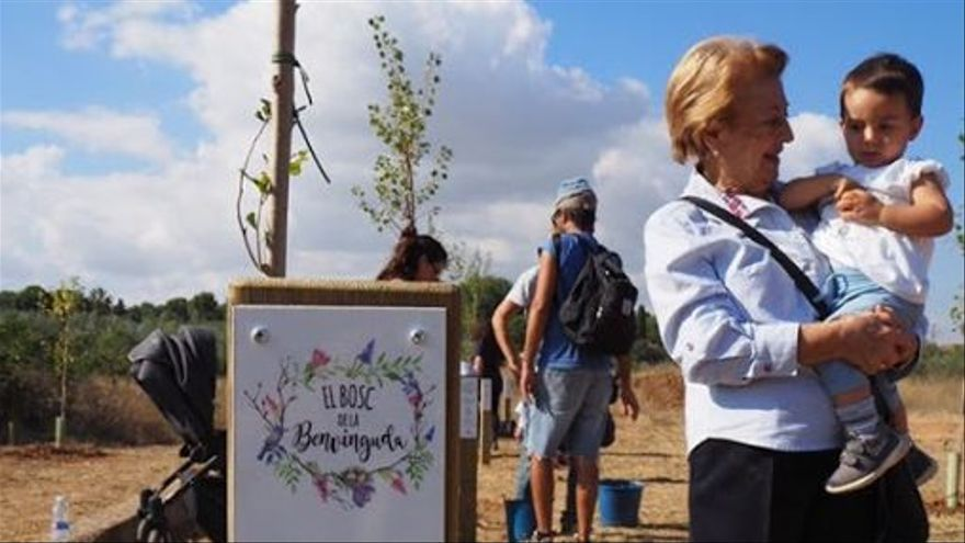 "L'Eliana celebra este domingo el ""Bosc de la Benvinguda"""