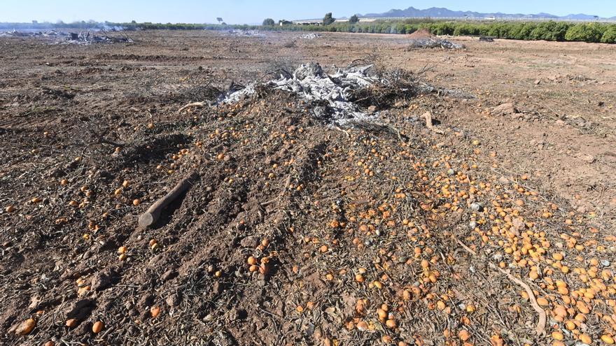 Vila-real regulará el uso del fuego en explotaciones agrícolas y ganaderas