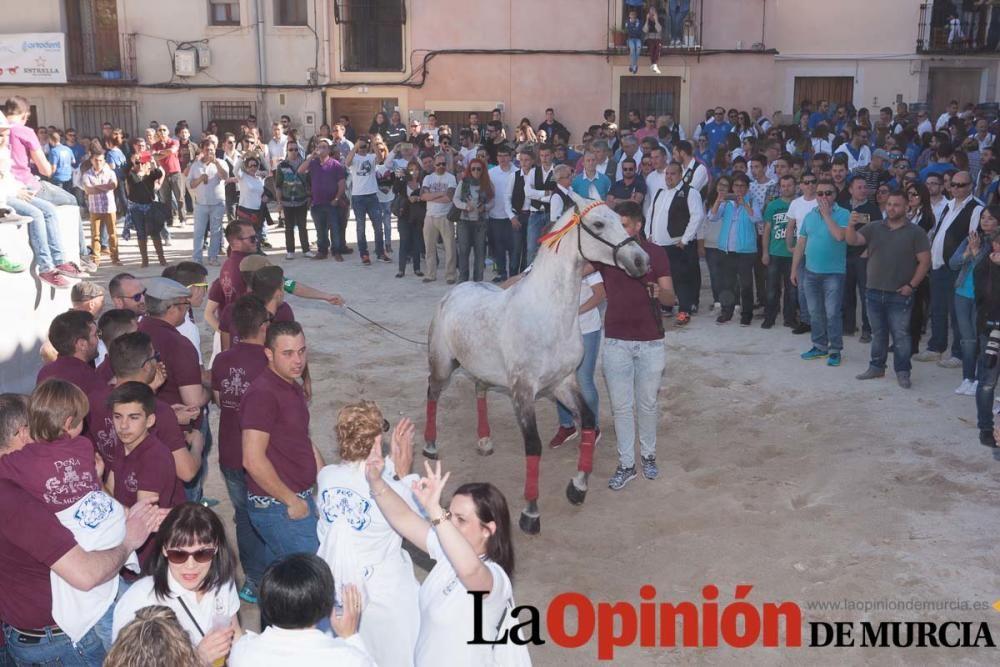 Día uno de mayo, entrada de caballos al Hoyo