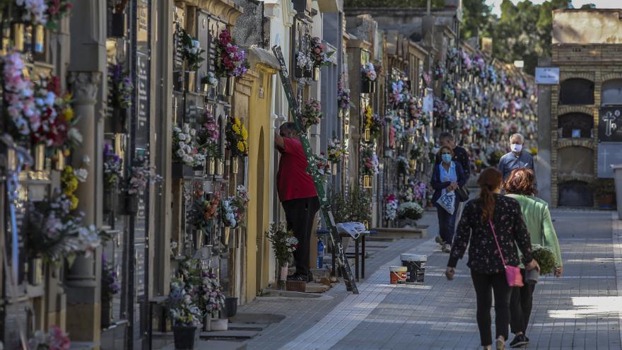 Elche recibirá 32.600 euros para la exhumación e identificación de víctimas de la dictadura