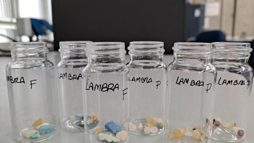 Hallan antibióticos y otros medicamentos en microplásticos vertidos al mar