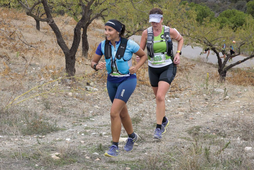 Nogalte Trail (III)