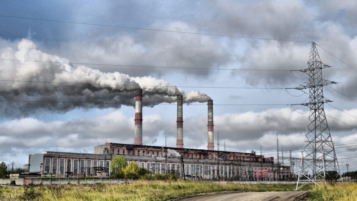 Las seis formas en que la destrucción del medio ambiente daña la salud