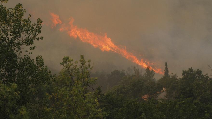 """Medio Ambiente asegura que el incendio de Ávila es """"uno de los mayores"""" desde que hay registros en España"""