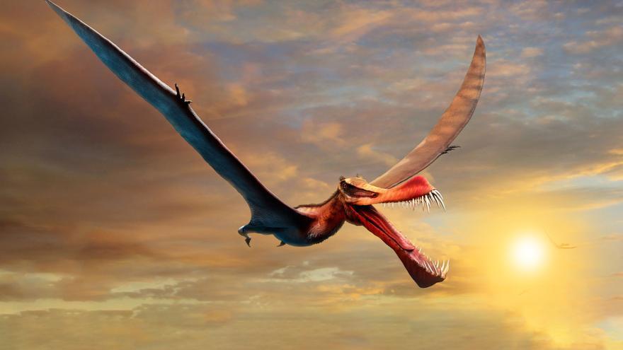 Un dinosaurio volador similar a un dragón sobrevoló los cielos de Australia