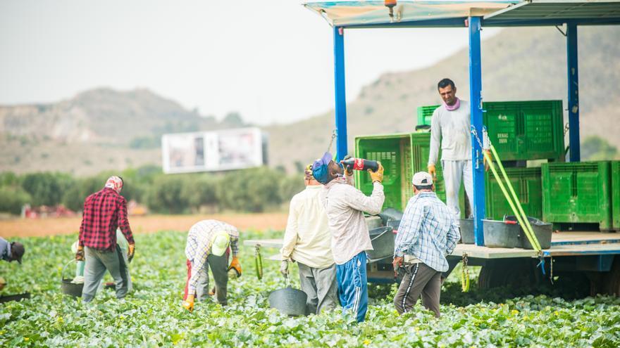 Un trabajador agrícola, grave tras sufrir un golpe de calor en una finca de Alhama