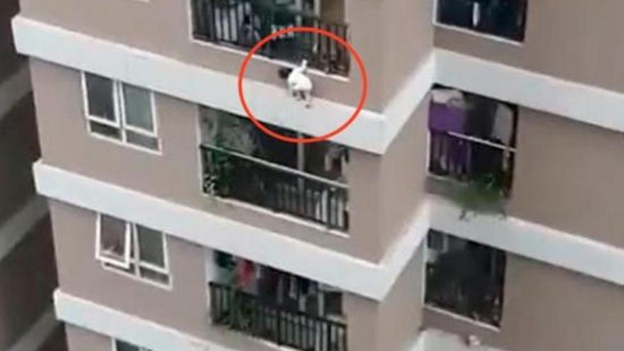 Un repartidor salva a una niña de tres años que cayó de una altura de 12 pisos