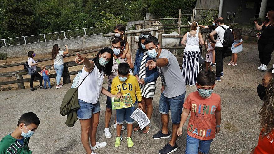 El zoo de Vigo se convierte en un terreno de juego con búsquedas del tesoro