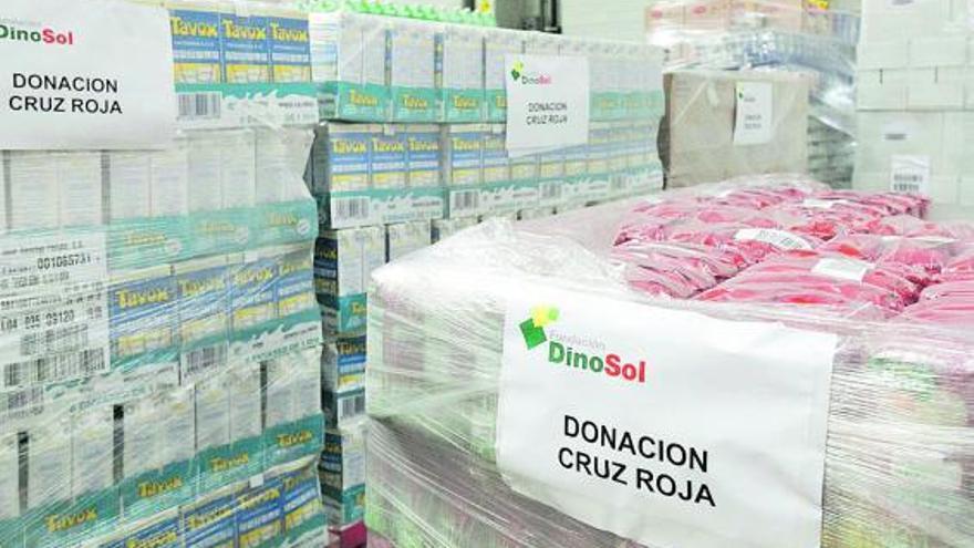 Fundación DinoSol se vuelca con los canarios