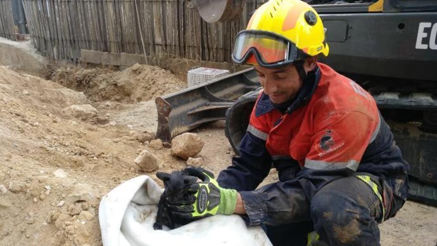 El rescate de un gato atrapado bajo tierra moviliza a los bomberos y a una retroexcavadora