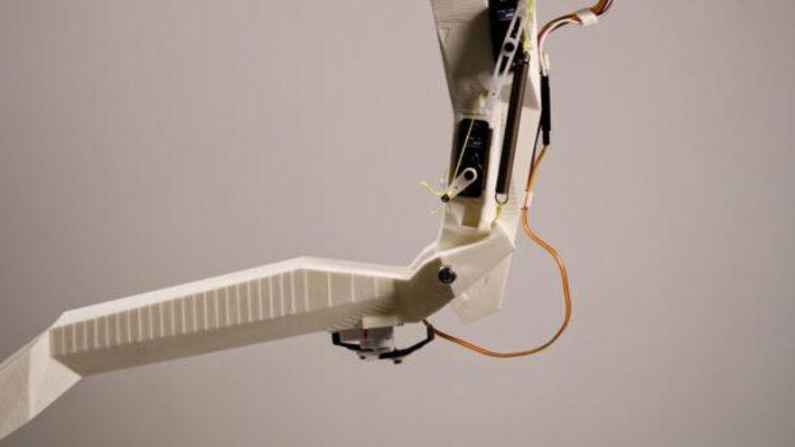 Robots bioinspirados aprenden de las libélulas