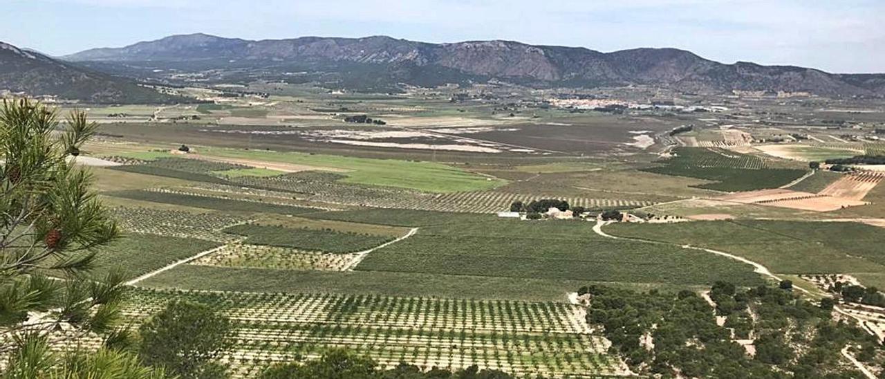 Vista de la sierra de la Umbría en Salinas donde está proyectada una central fotovoltaica. | ÁXEL ÁLVAREZ
