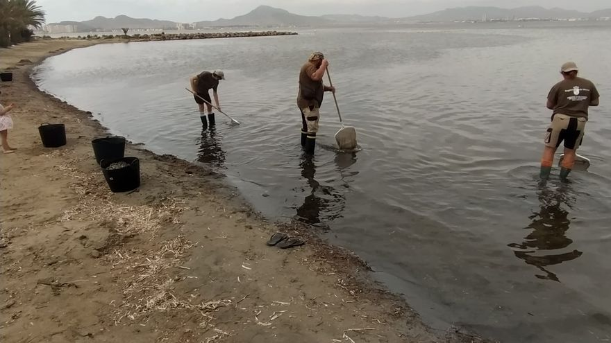 """El PSRM denuncia que Miras """"plantea barbaridades ambientales"""" en el Mar Menor"""