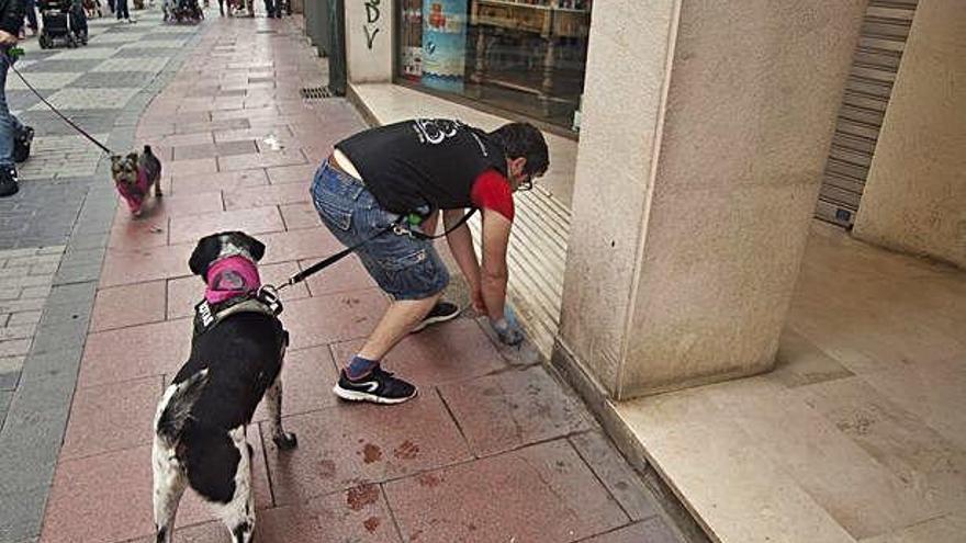 Un hombre recoge la deposición de su perro en la calle Herreros. A. G.