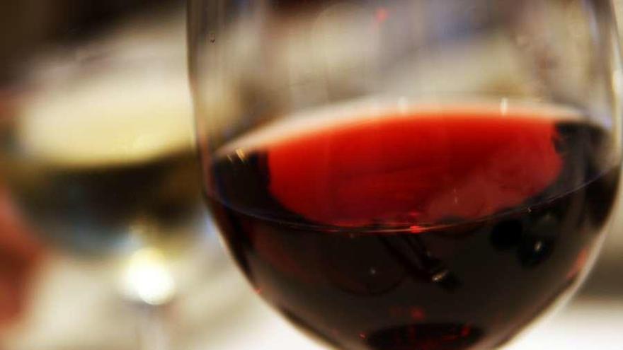 El PP denuncia que los principales vinos de Zamora se quedan fuera de las ayudas del Gobierno