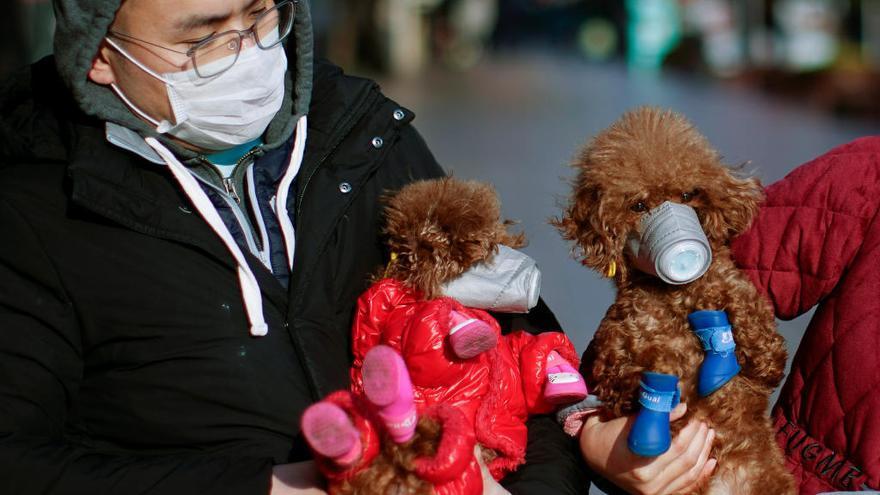El president xinès coneixia la gravetat del virus de Wuhan al gener