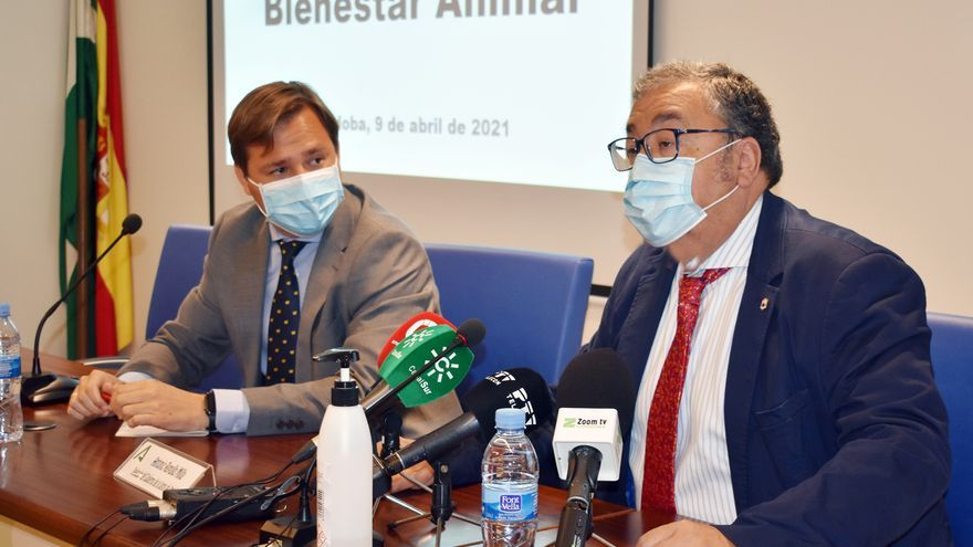 La futura Ley de Bienestar animal beneficiará en Córdoba a más de 400.000 animales de compañía
