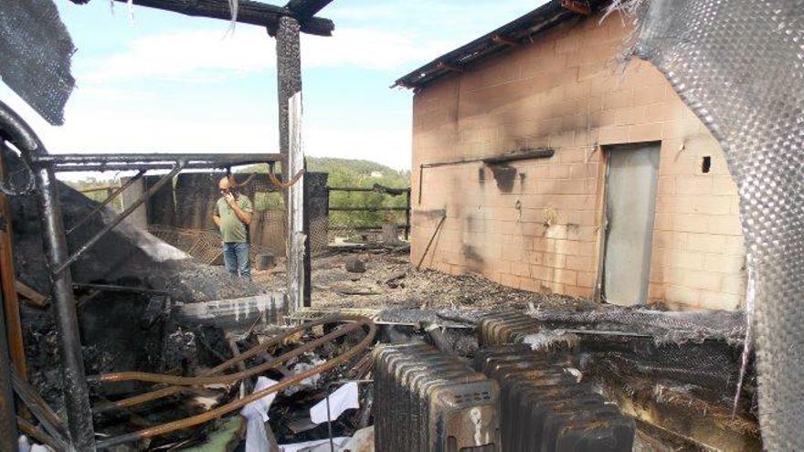 Moren vuit aus rapinyaires en un foc fortuït en una hípica de Sant Fruitós