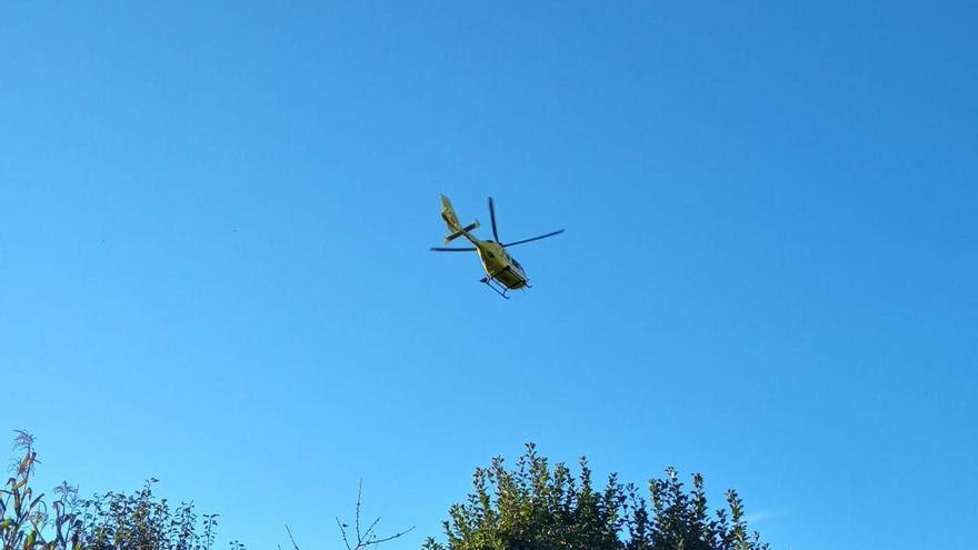 Herido de consideración tras caer desde una altura de 4 metros en Vila de Cruces cuando recogía nueces
