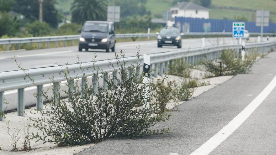 Las infraestructuras, principal fortaleza asturiana en competitividad según Ceprede