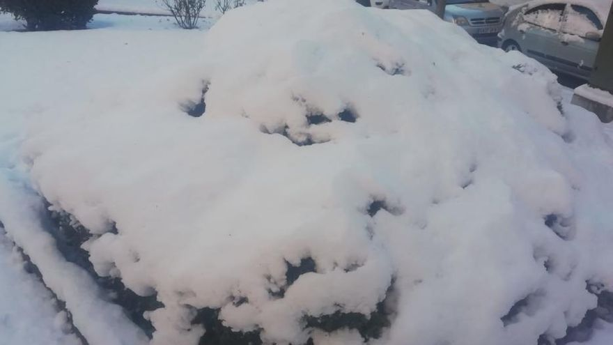 Berga nevada el 24 de gener