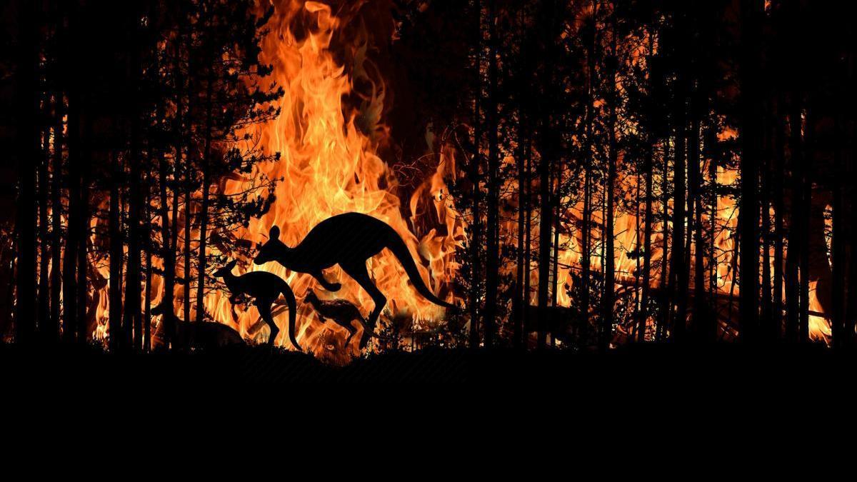Un informe de la Fundación Aquae constata que el abandono del campo y el cambio climático favorecen los megaincendios forestales