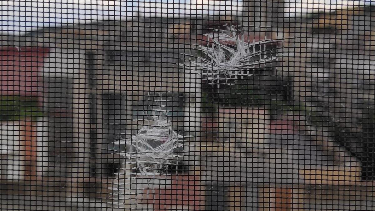 Els forats que han aparegut en una finestra del centre.