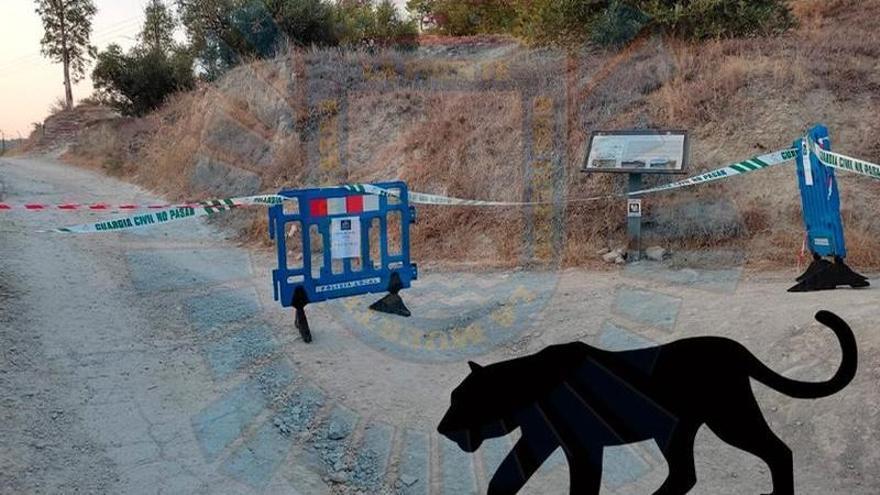 Cerrado el Paseo Ribereño de Cieza ante el supuesto avistamiento de dos felinos de gran tamaño