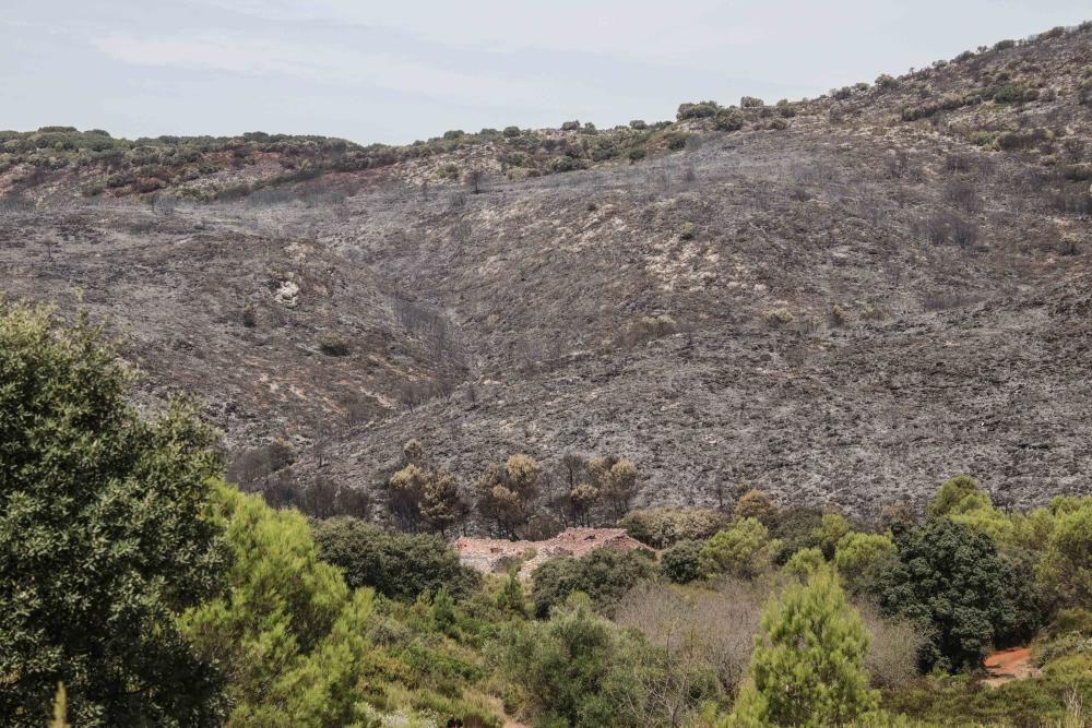Incendio en la Vall de Gallinera