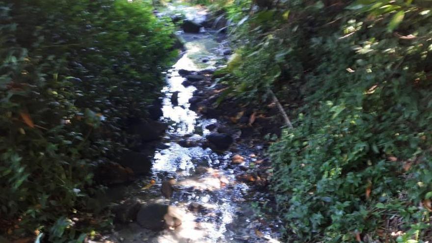 Otro foco de contaminación en Donón provoca la intervención de Seprona y la Policía Local