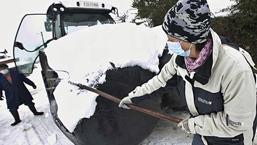 Cuatro kilómetros entre nieve y hielo para alimentar a 60 vacas