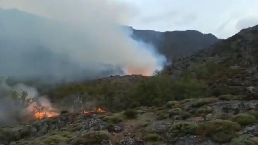 Incendio en Ribadelago: al menos dos focos ya en vías de extinción