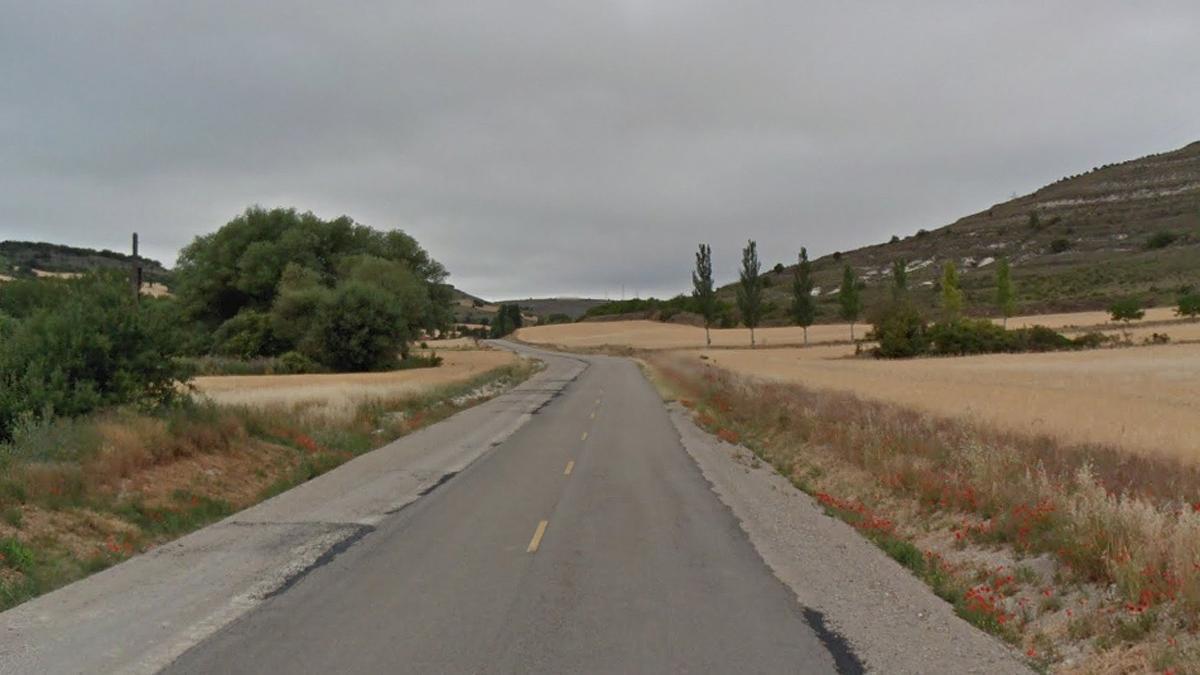 Un tramo de la carretera BU-627.