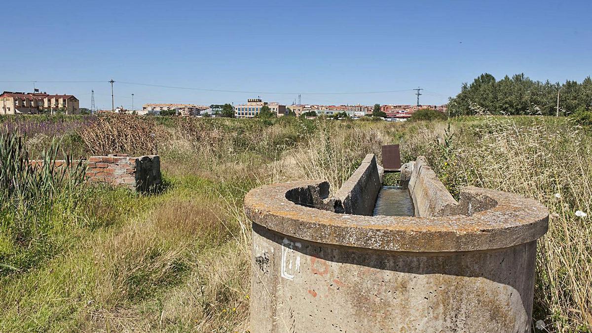 Una acequia del Canal del Esla frente a Benavente, facilita el riego en la zona sur de la ciudad.| J. A. G.