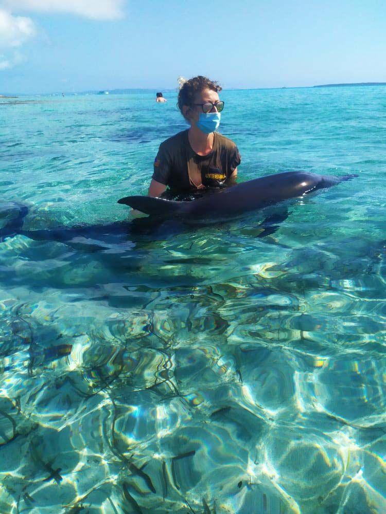 Intentan rescatar a un delfin despitado en la playa de Llevant en Formentera