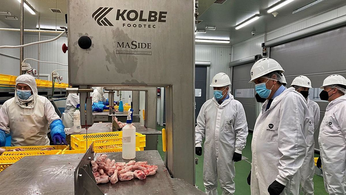 El consejero de Economía y Hacienda observa el funcionamiento de la fábrica de Moralejo Selección.   JCyL