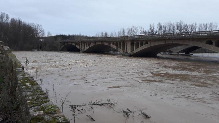 El río Órbigo a su paso por Santa Cristina y Manganeses de la Polvorosa, en alerta