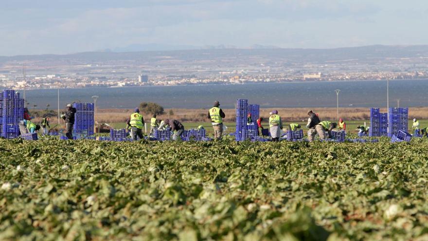 Adjudicarán un nuevo modelo territorial al Mar Menor para aumentar su protección