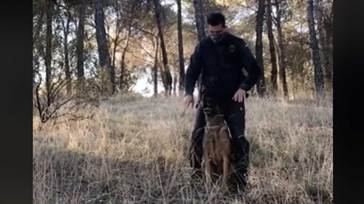 Guardia Civil bailando con un perro.