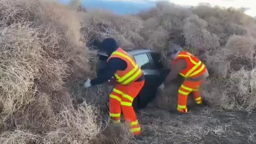 Miles de plantas rodadoras sepultan varios coches en una autopista de EEUU
