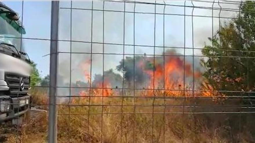 Ein 74-Jähriger wird als mutmaßlicher Brandstifter auf Mallorca festgenommen