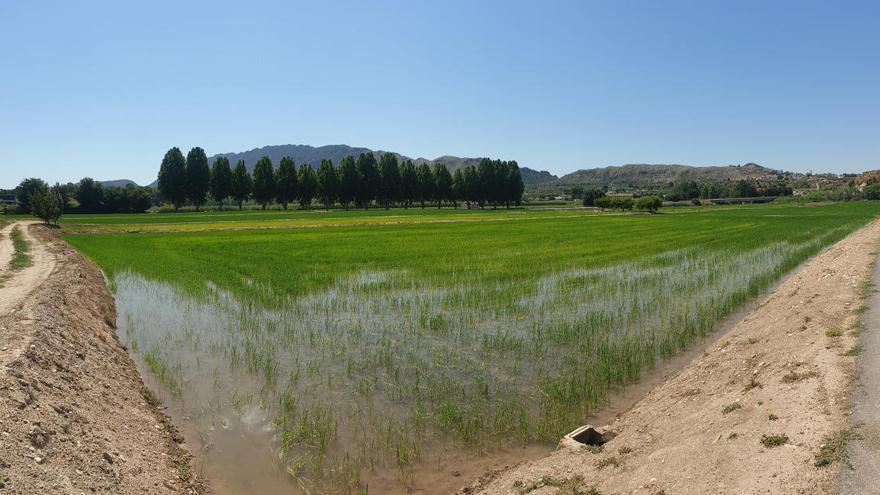 Se programa una nueva ruta eco-turística en Calasparra