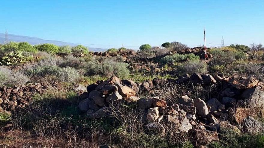 El área arqueológica de Llanos de Ifara, en Granadilla,  será declarada BIC