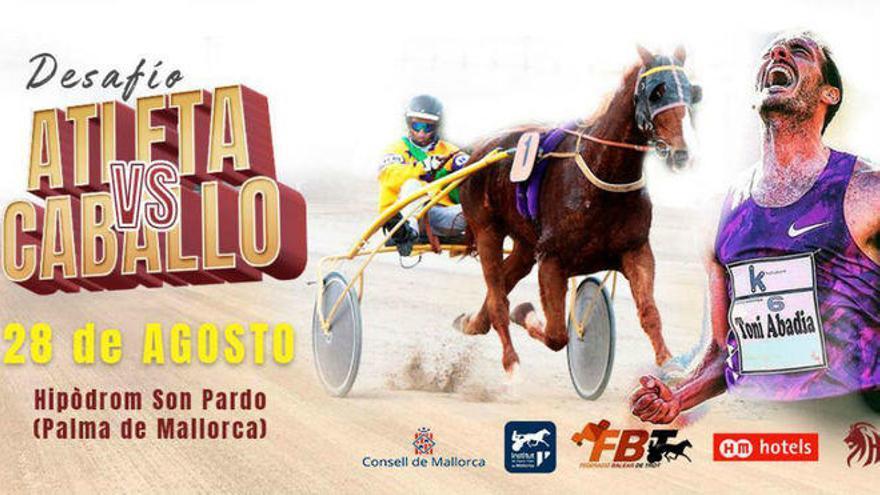 Desafío en Son Pardo: un caballo contra un atleta