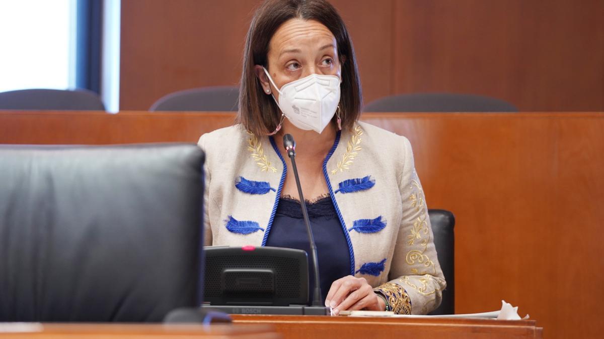 La portavoz de Hacienda del PP, Carmen Susín, en la comisión del ramo en las Cortes de Aragón.