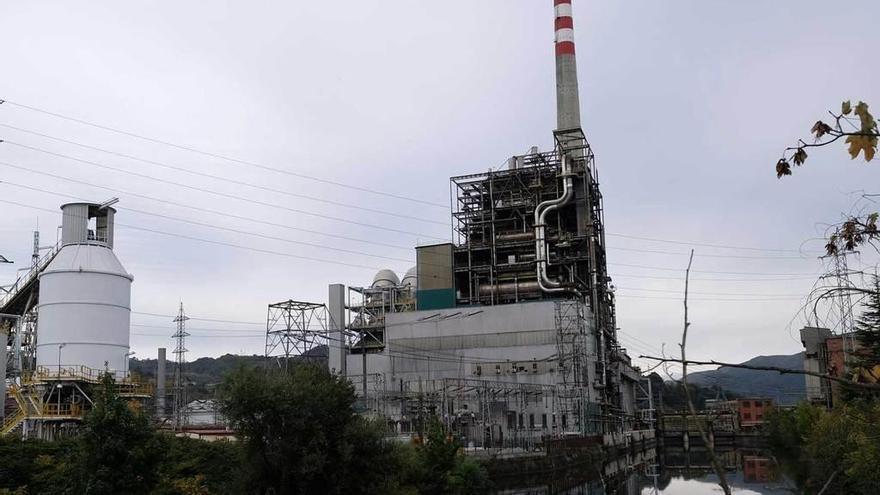 La plantilla pide combinar energía solar y biomasa en Lada cuando cierre la térmica