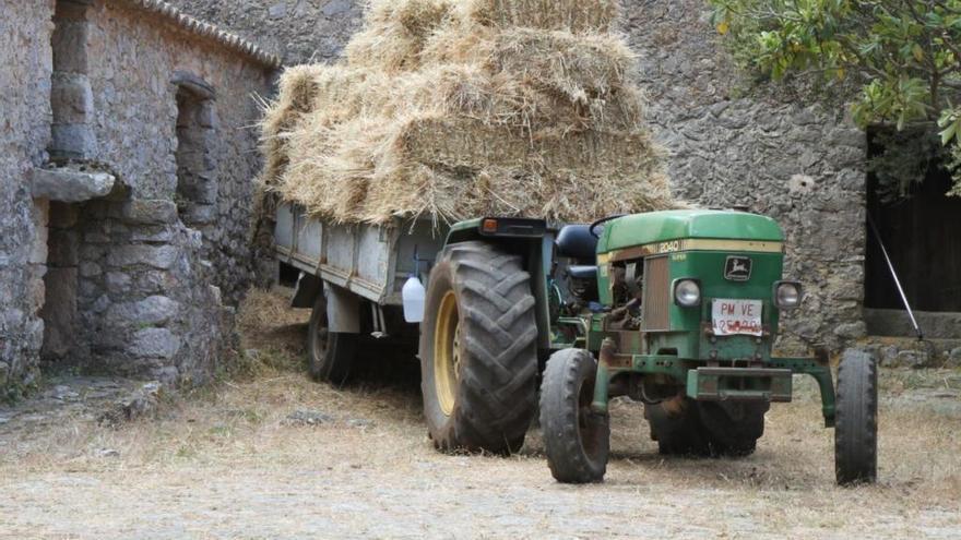 86-Jähriger stirbt nach Traktorunfall