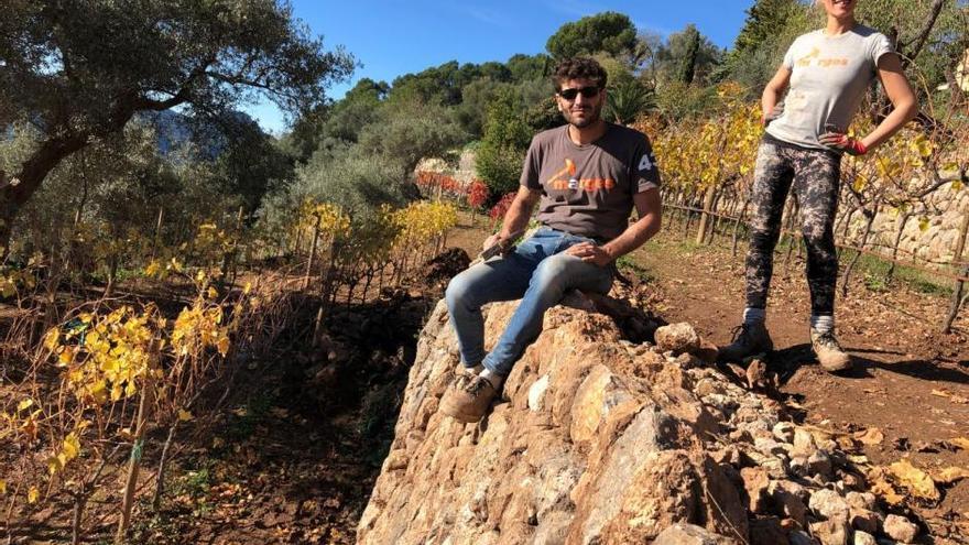 So baut man Trockensteinmauern auf Mallorca